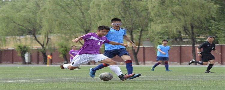 优秀足球人才从哪来? 金字塔式培养人才不能