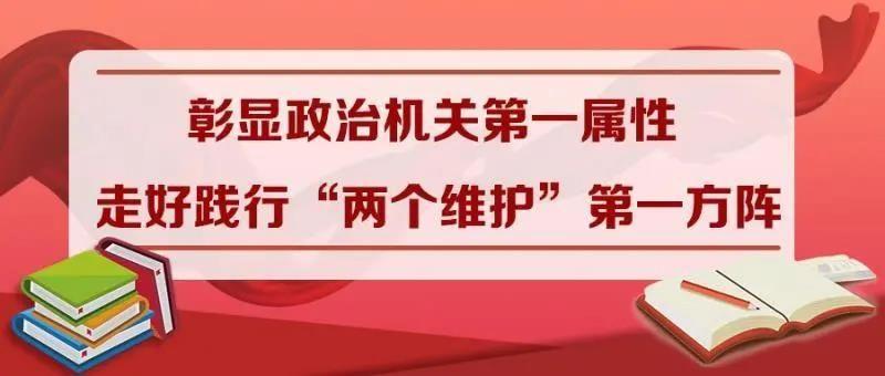 """彰显政治机关第一属性 走好践行""""两个维护""""第一方阵  ——教育部党组成员""""七一""""讲专题党课综述"""